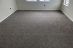 Carpeting and basboard